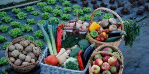 В экономическом союзе формируется единый рынок organic-товаров