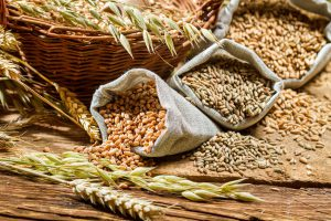 Проводится обсуждение инициативы, касающейся экспорта зерна